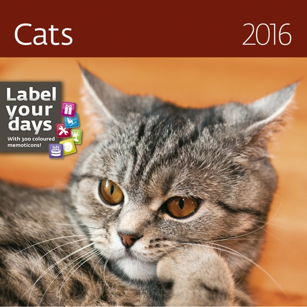 Cats kalendář