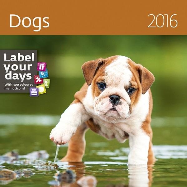 Dogs kalendář