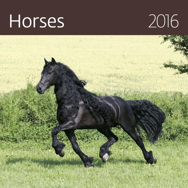 Horses kalendář