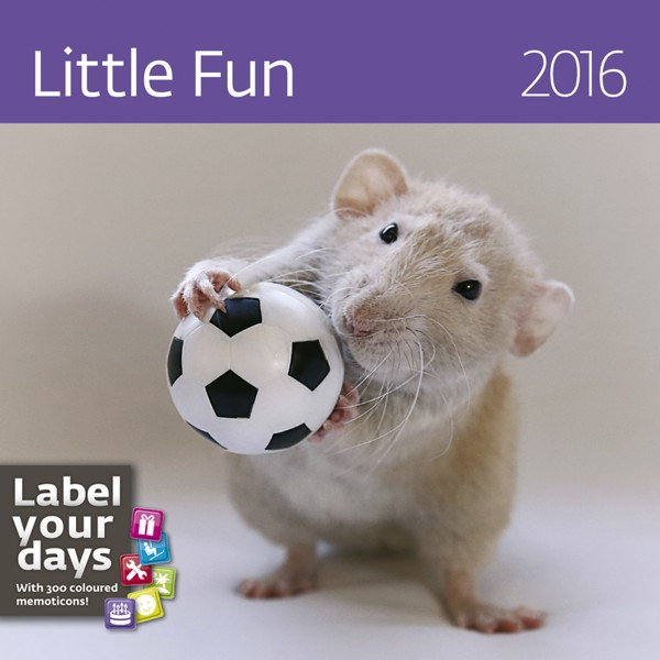 Little Fun kalendář