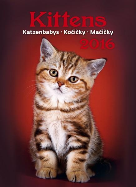 Kočičky kalendář