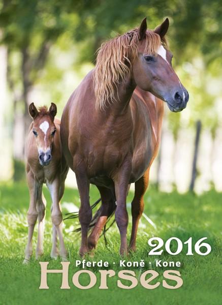 Koně kalendář